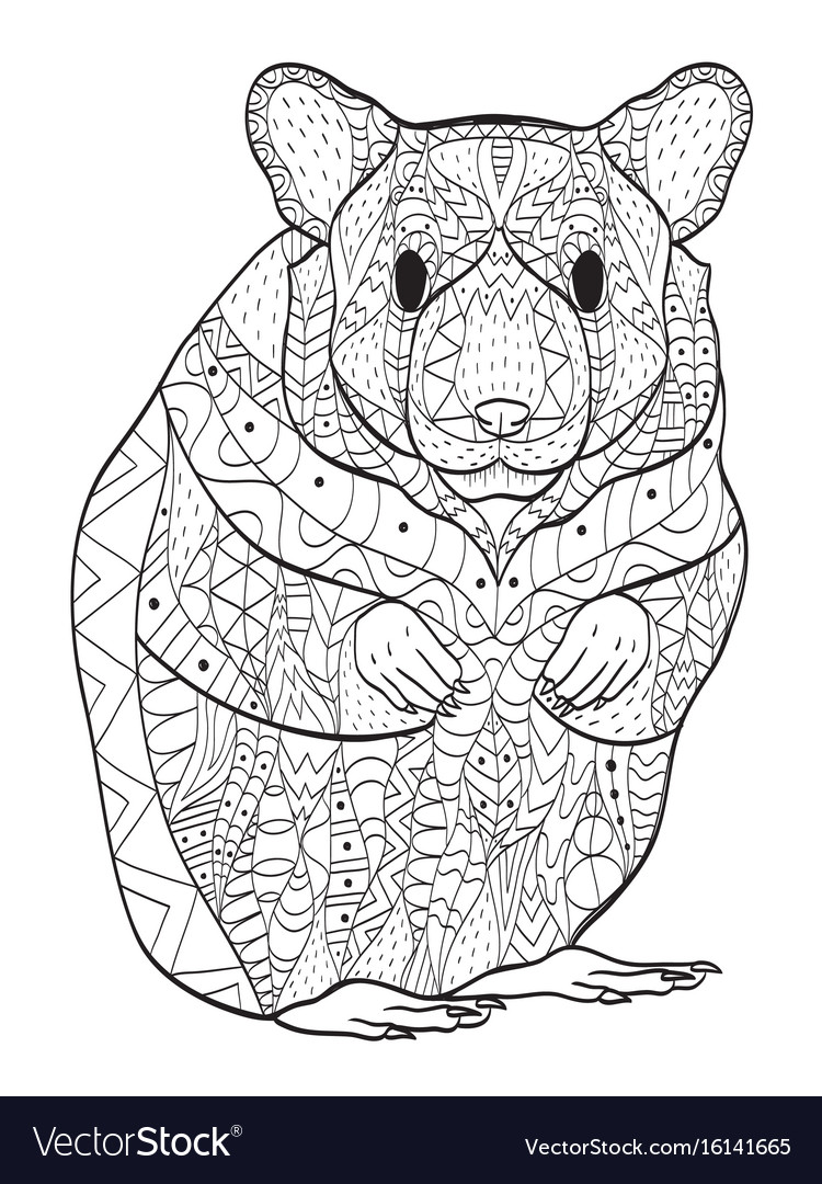 Rodent Hamster Coloring For Adults Royalty Free Vector Image