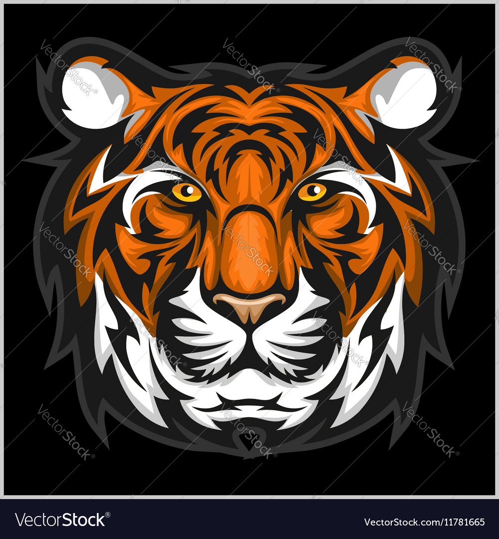 tigers face of a tiger head royalty free vector image