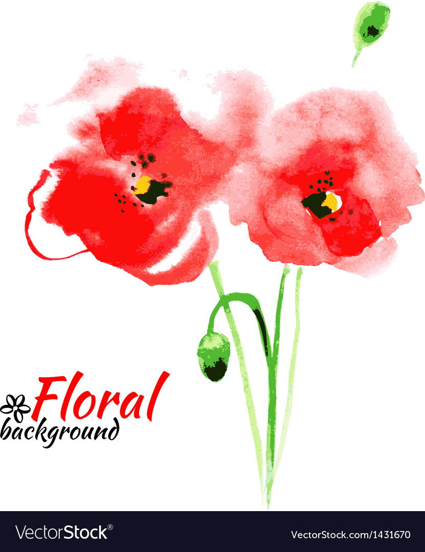 Beautiful watercolor paint red poppy