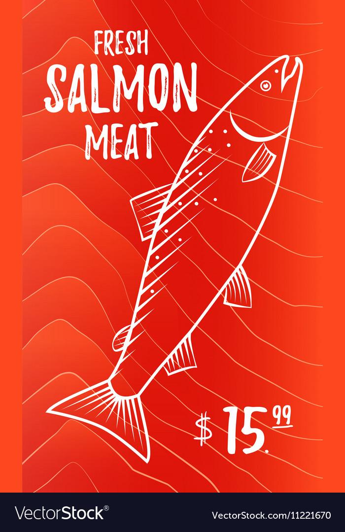 Fresh salmon meat