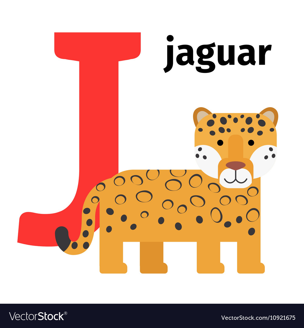 animals that start with the letter j animals zoo alphabet letter j royalty free vector 20458 | english animals zoo alphabet letter j vector 10921675