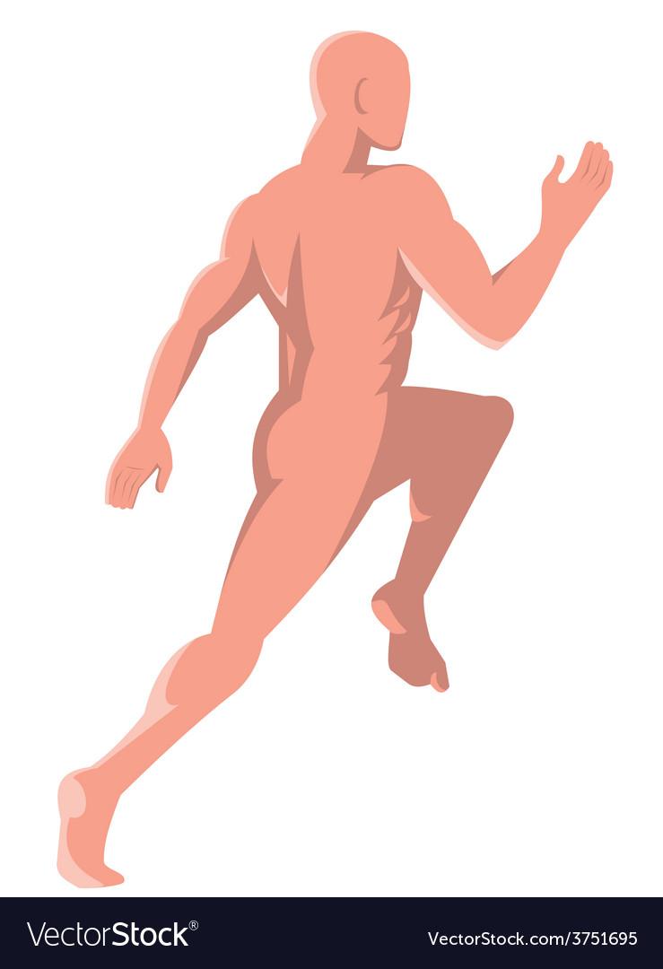Male human anatomy running rear Royalty Free Vector Image