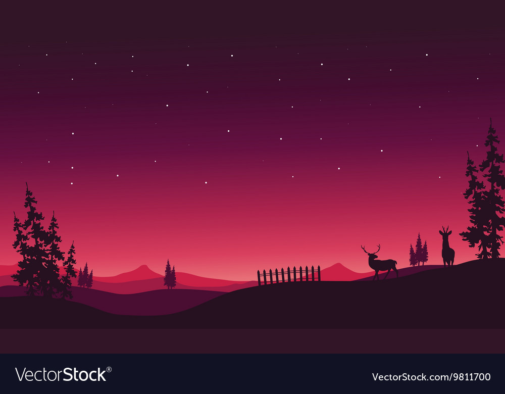 At night Christmas scenery of silhouette vector image