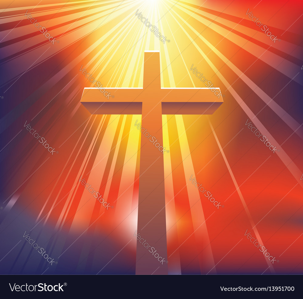 The cross vector image
