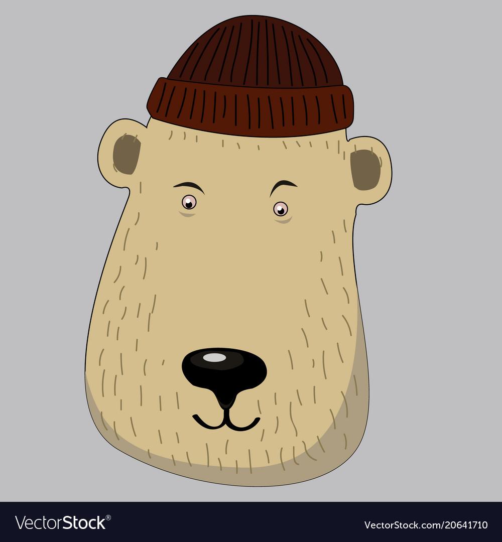 Cute honey bear with scarf