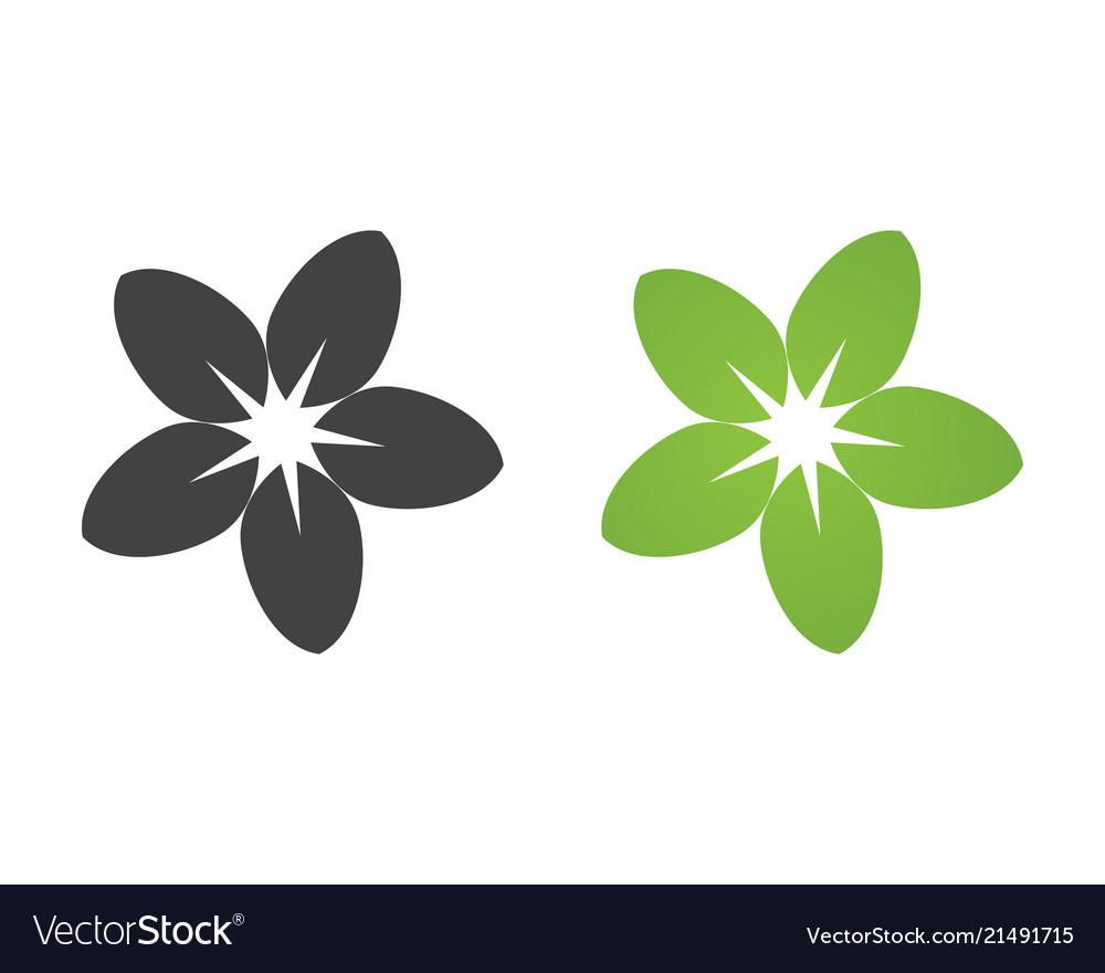 jasmine flower icon design logo template vector image