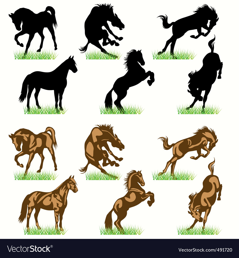 Horses set02