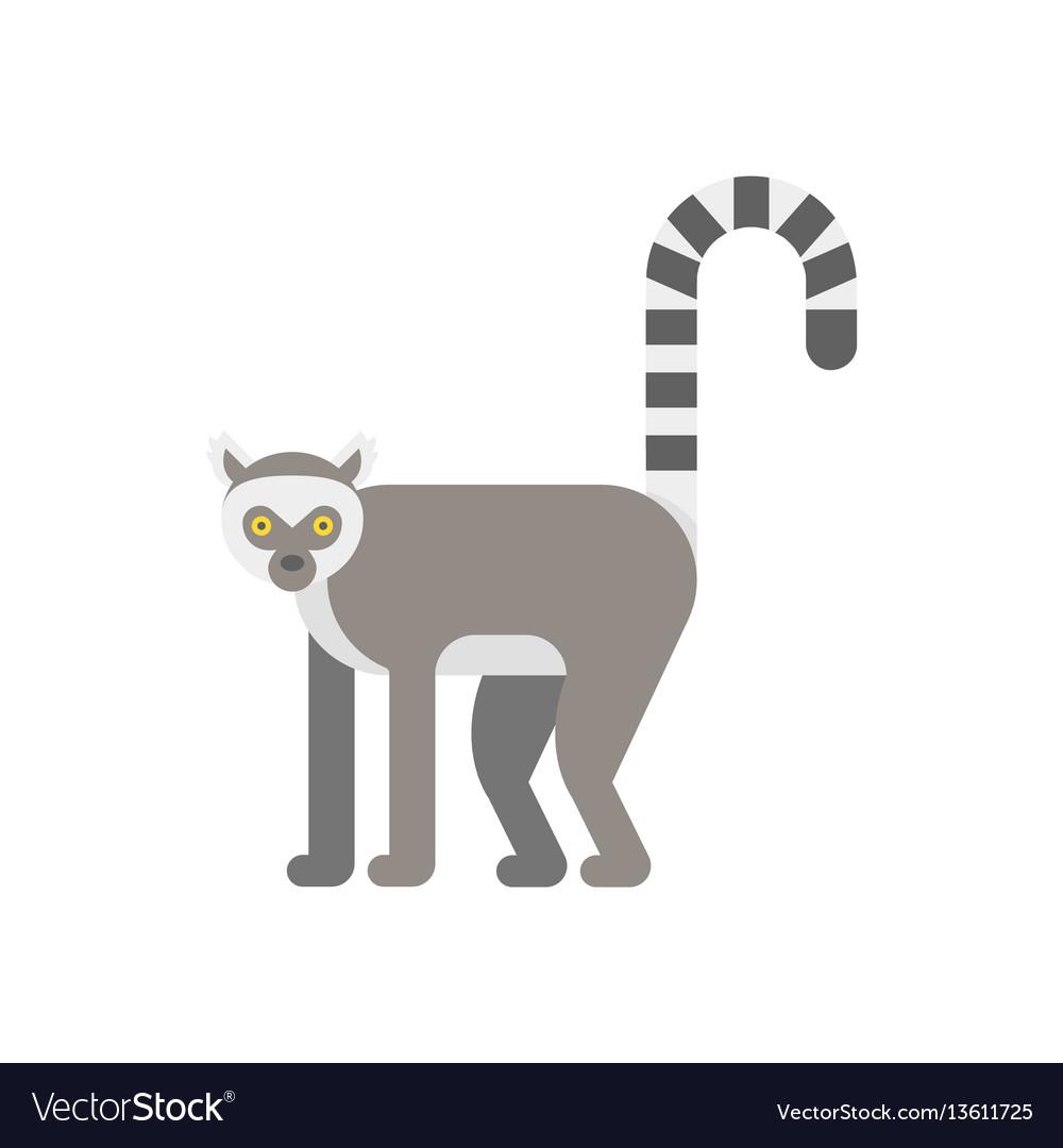 Flat style of lemur