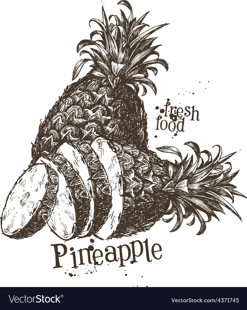 Pineapple logo design template fruit or