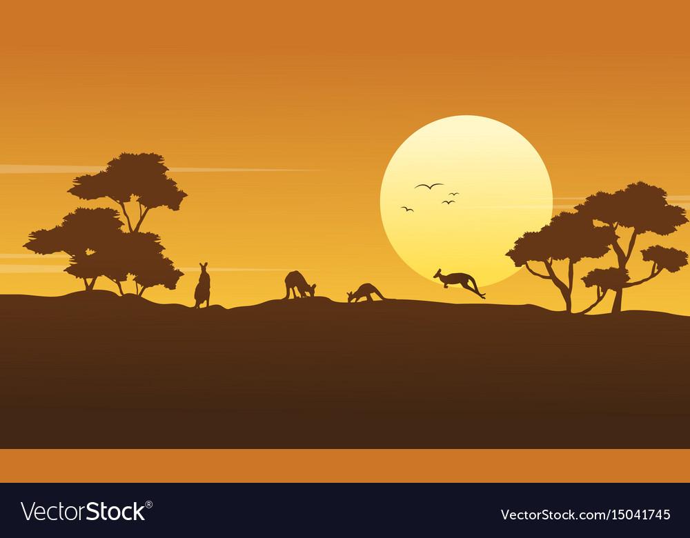 Scenery kangaroo beauty collection stock