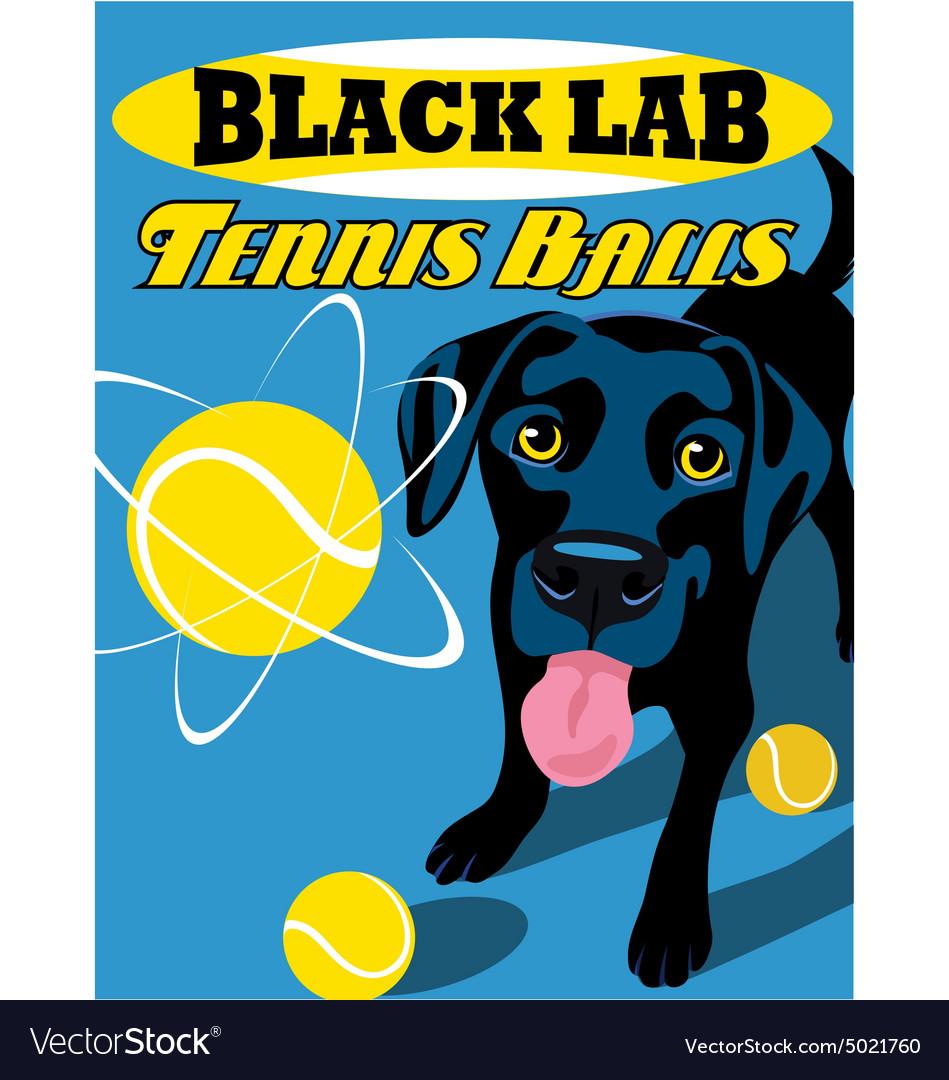 Poster black lab dog