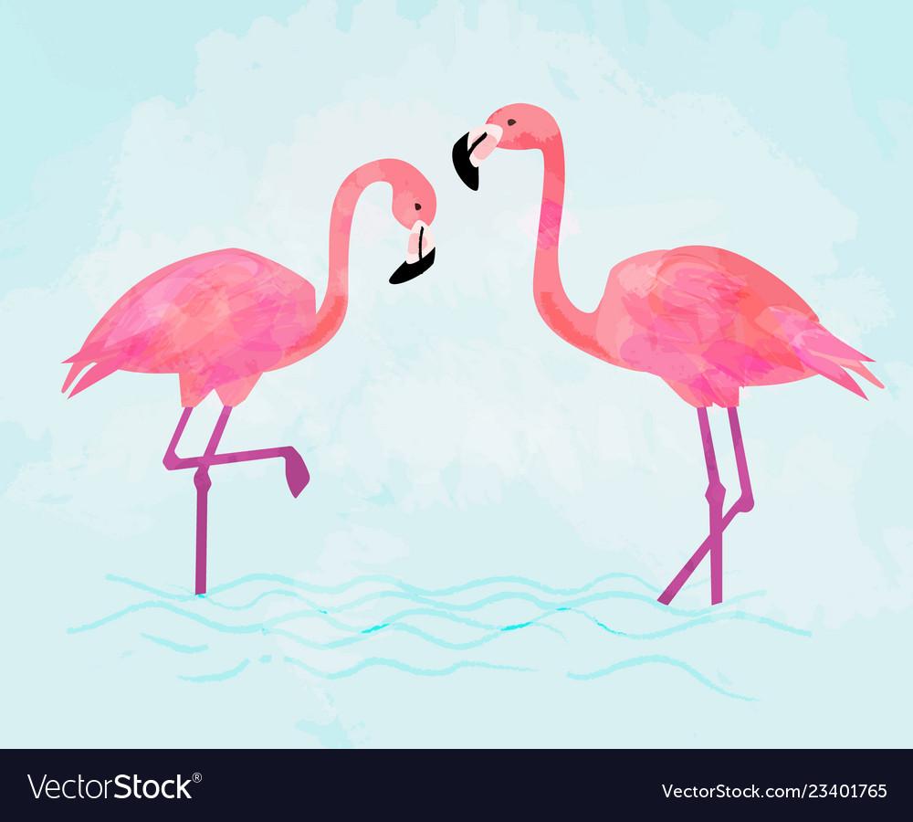 Pink flamingo couple on blue background