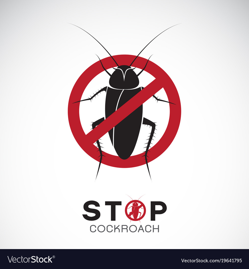 Cockroach in red stop sign on white background no