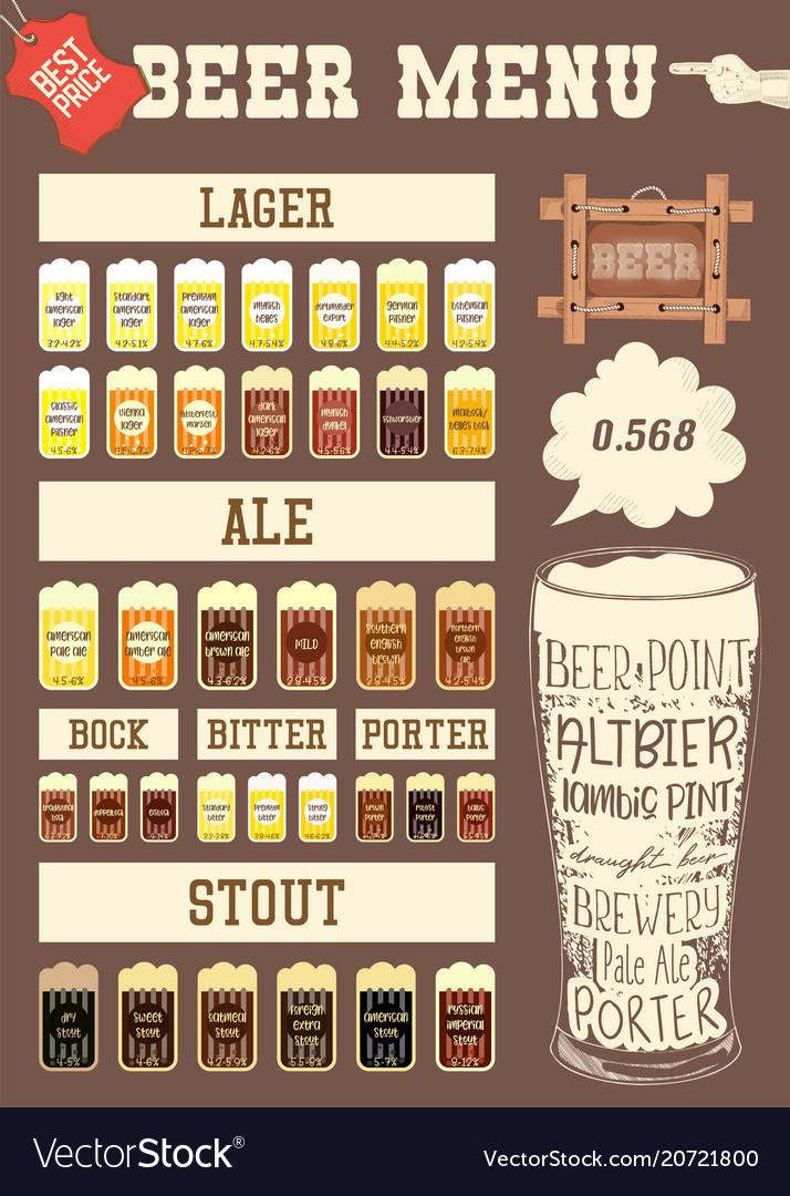 Beer infographic vector image