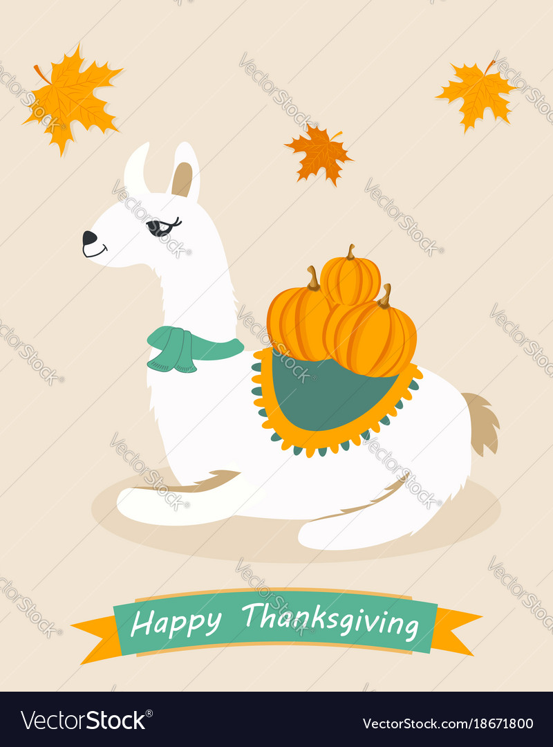 Poster for thanksgiving day with lama and pumpkin vector image