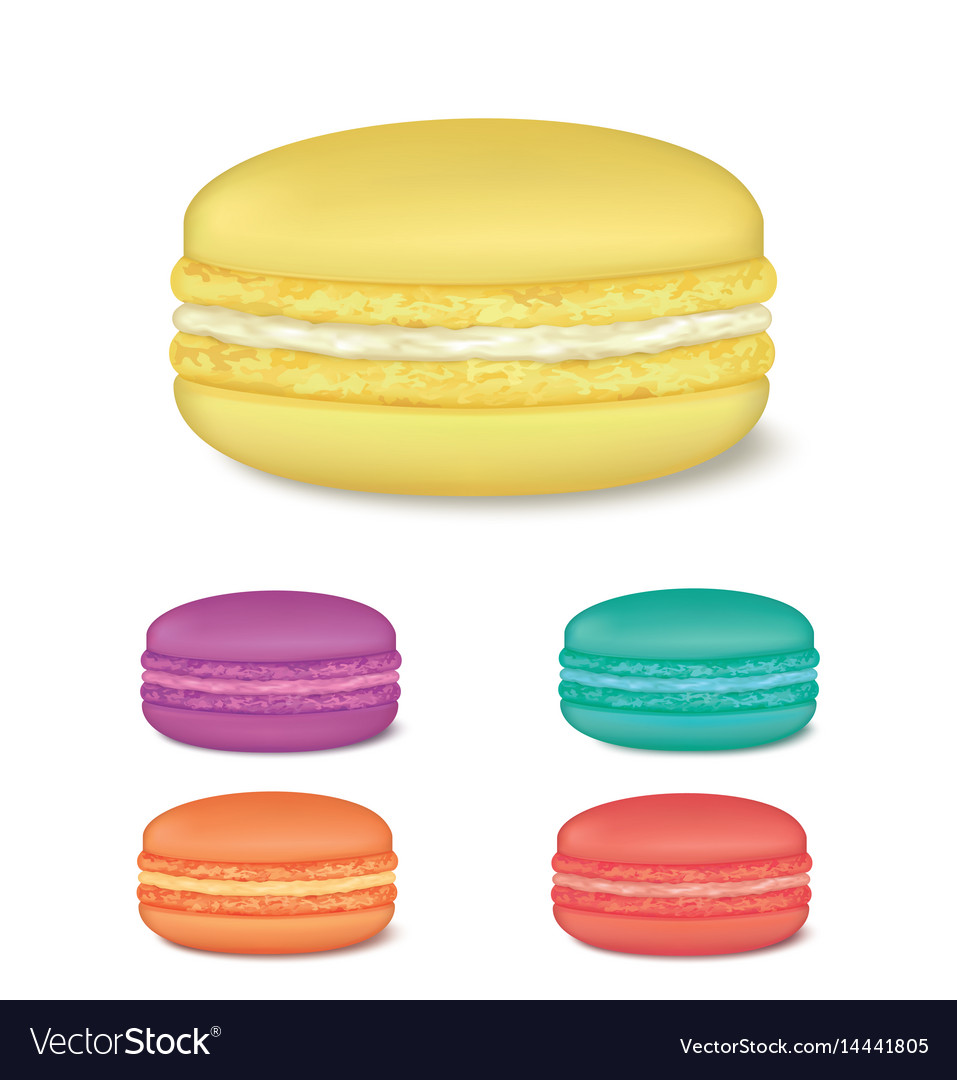 Colourful french macaroons vector image