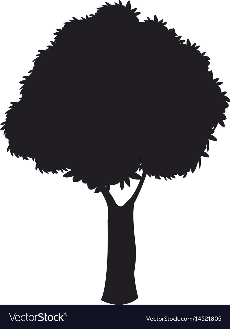 Silhouette tree woody nature dark stem design