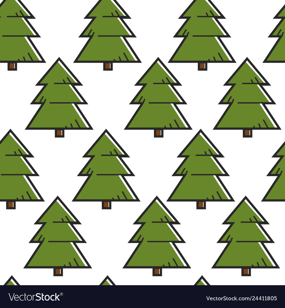 Spruce or fir tree seamless pattern forest or