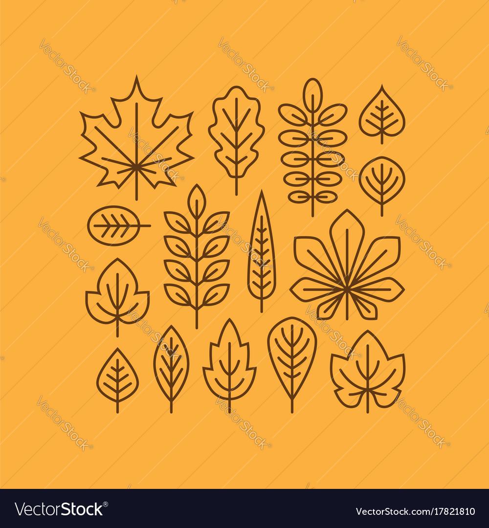 Autumn leaves line icons set