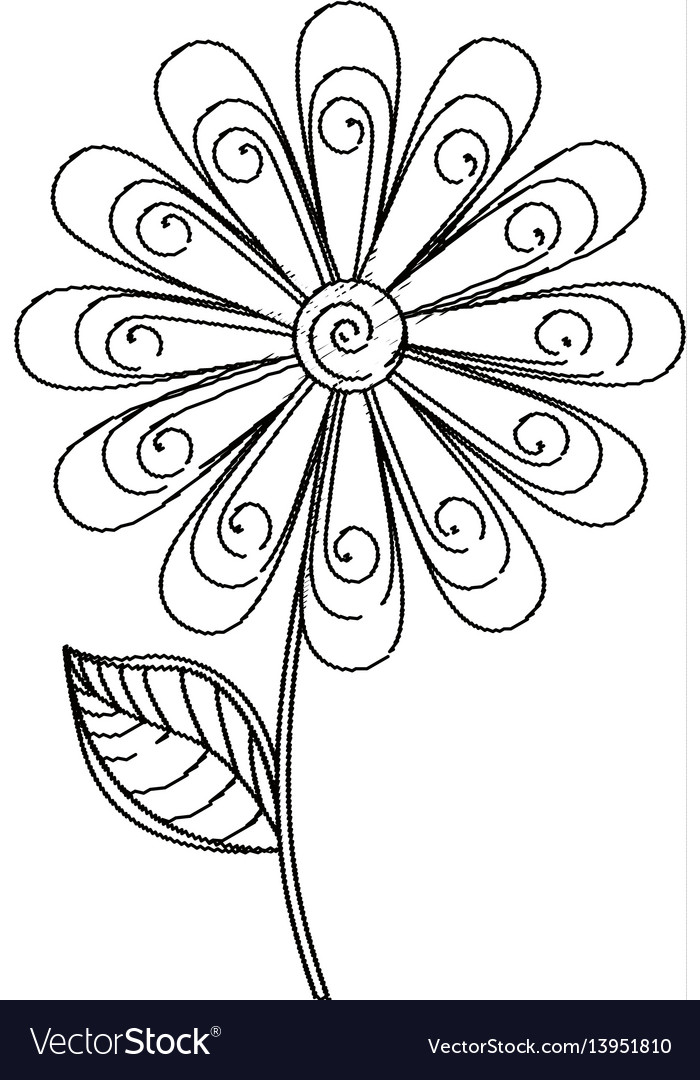 Daisy flower decoration sketch
