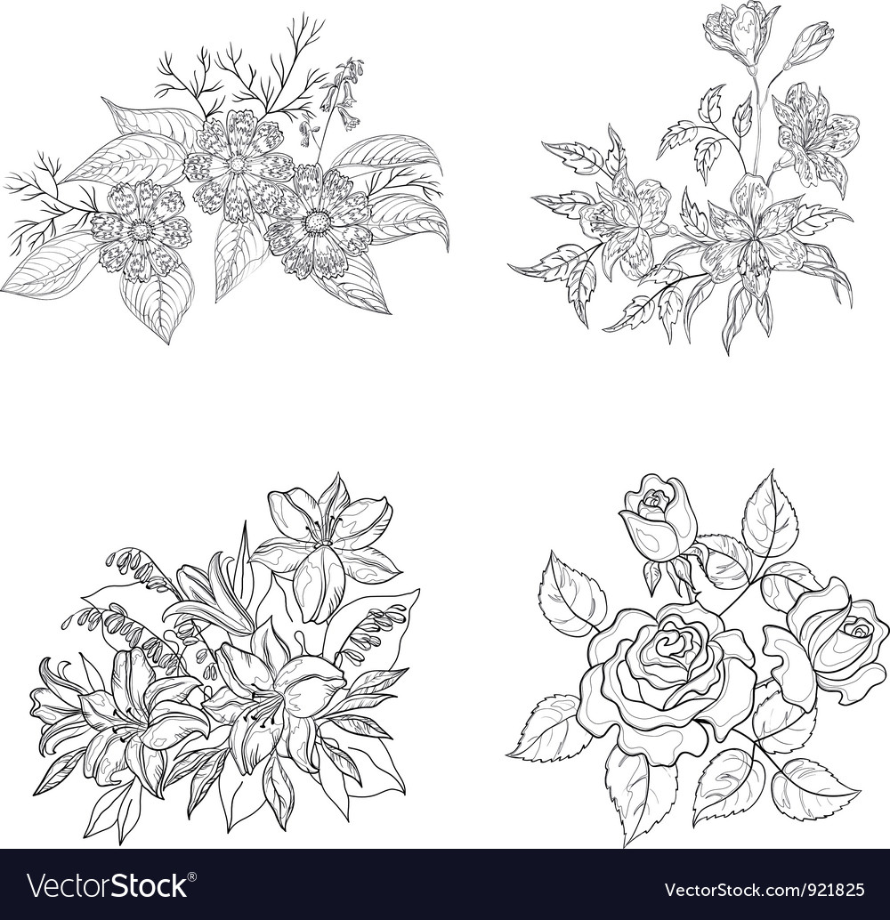 Cultivated flowers outline set