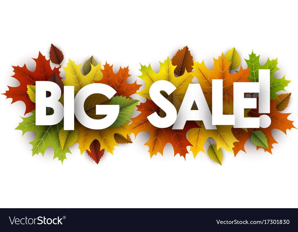 Autumn big sale banner with leaves