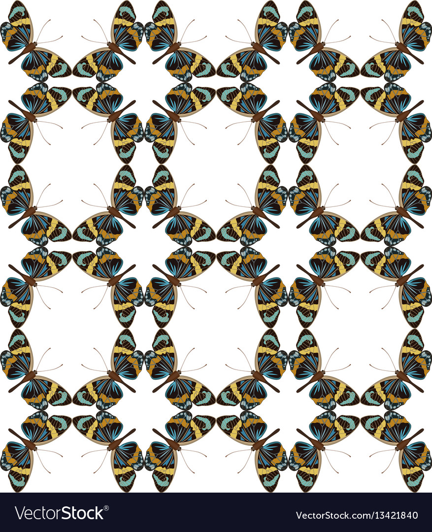 Butterfly colorful geometric seamless pattern