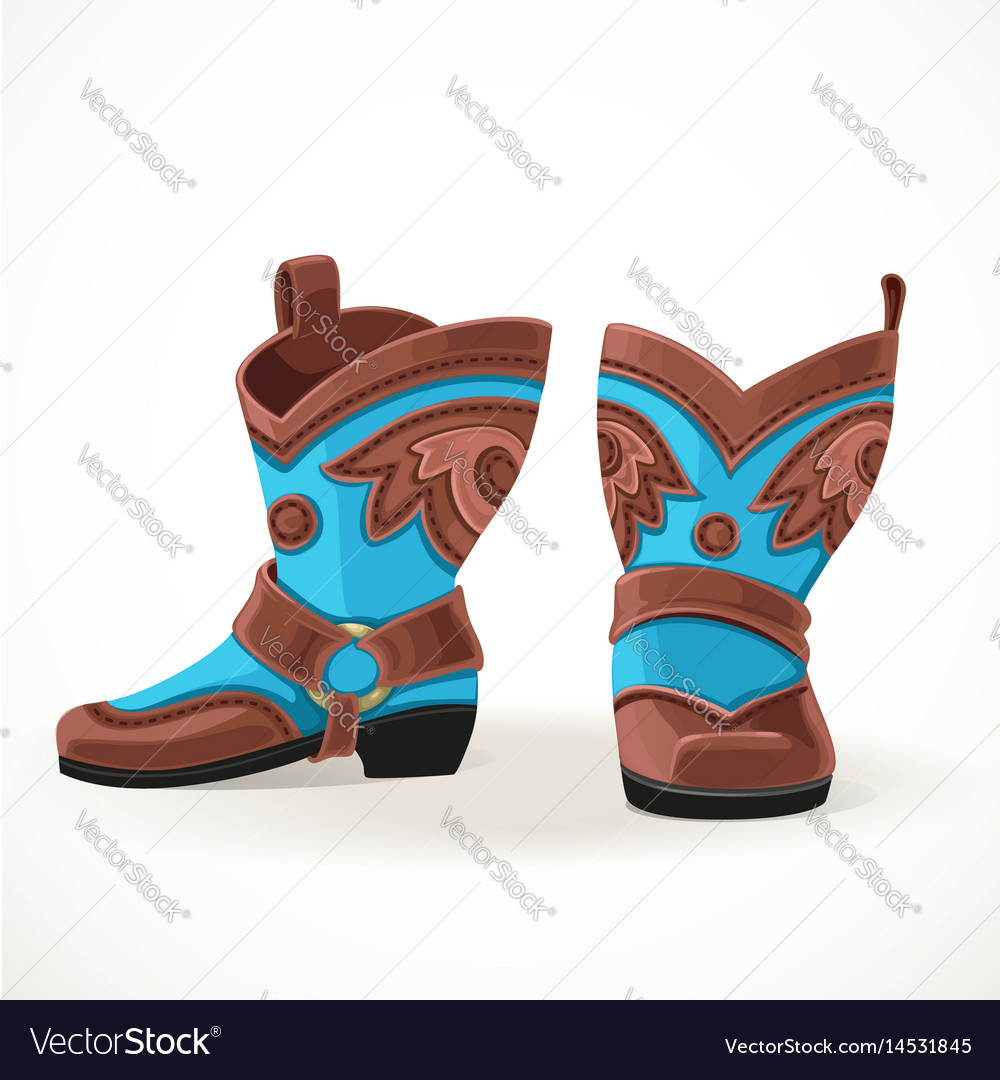 Embroidered cowboy boots from brown and blue