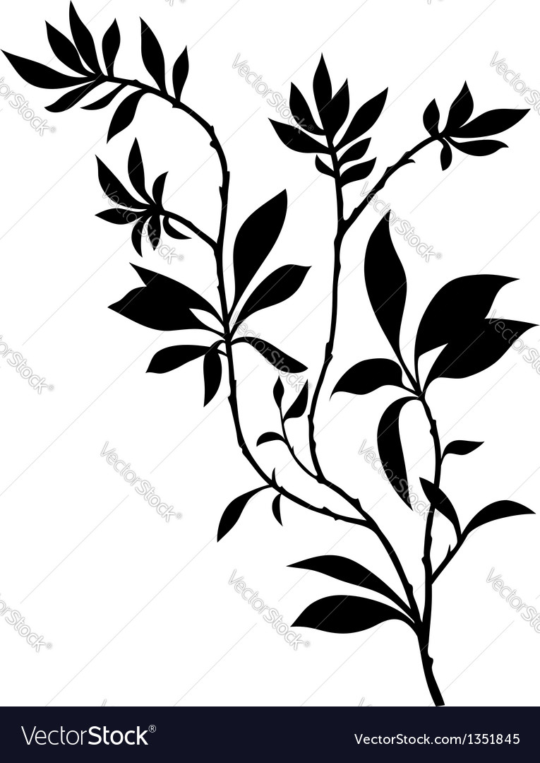 Tree branches silhouette with lot of leaves