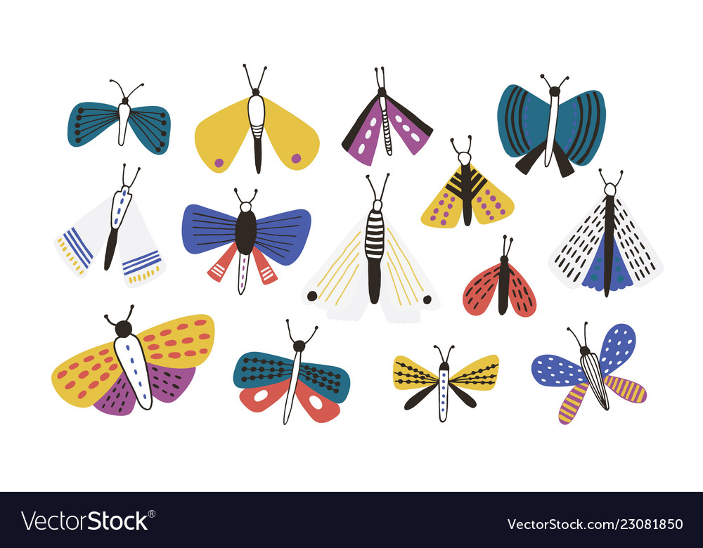 Bundle of bright colored cartoon moths isolated on