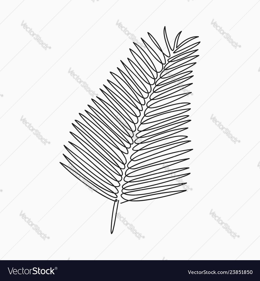 Palm leaf one line