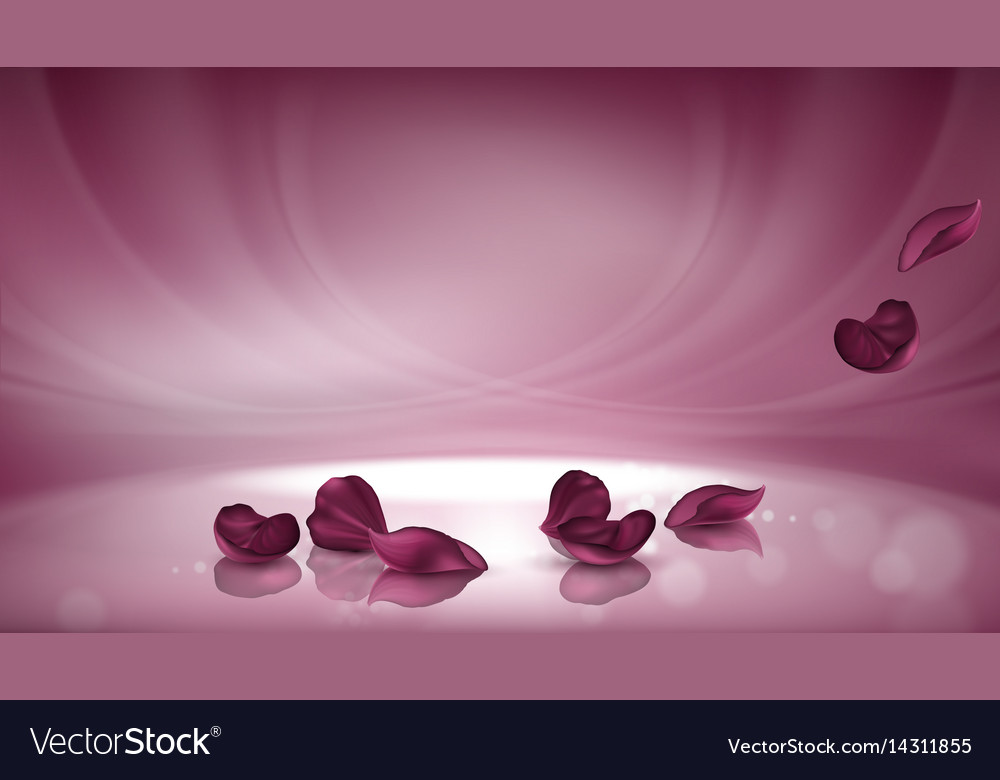3d pink background with burgundy rose vector image