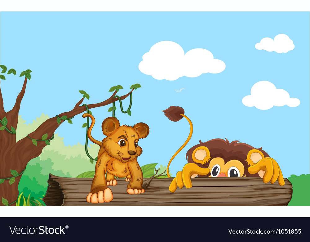 Cub and lion vector image