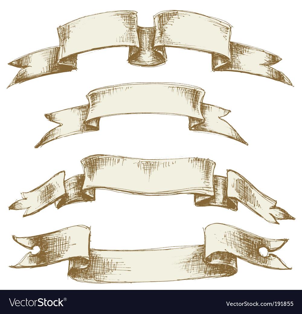 Vintage scrolls set vector image