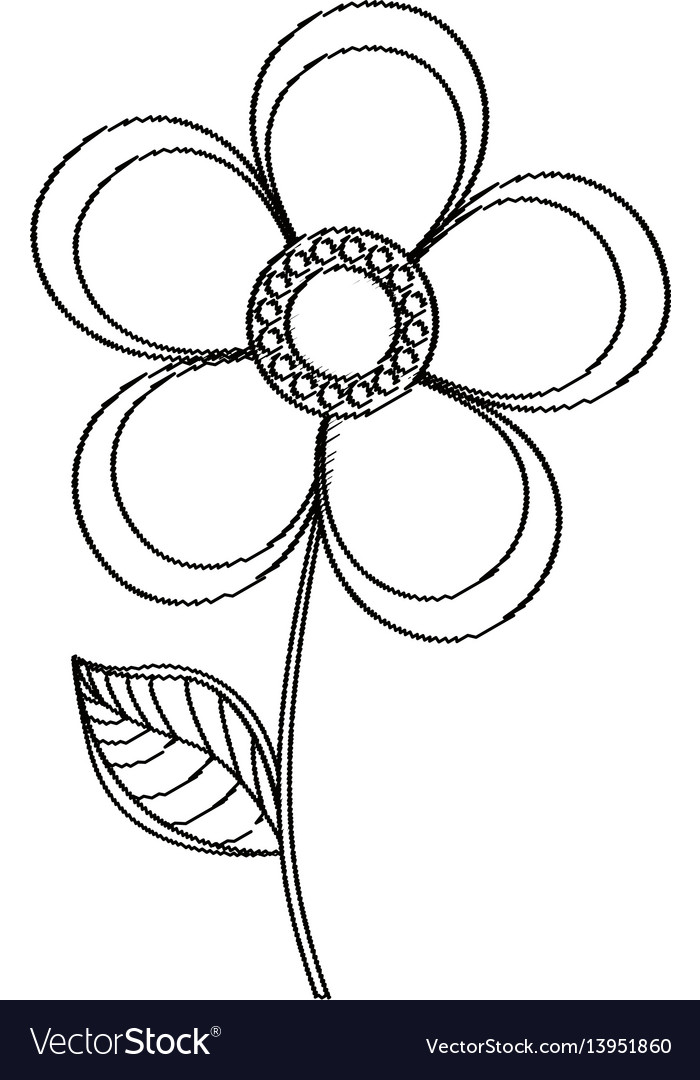 Magnolia flower decoration sketch