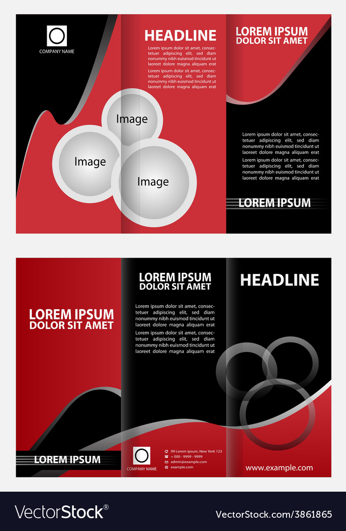 modern tri fold brochure design template with red vector image