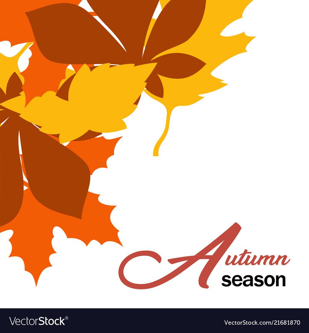 Autumn season maple leaves fall design imag