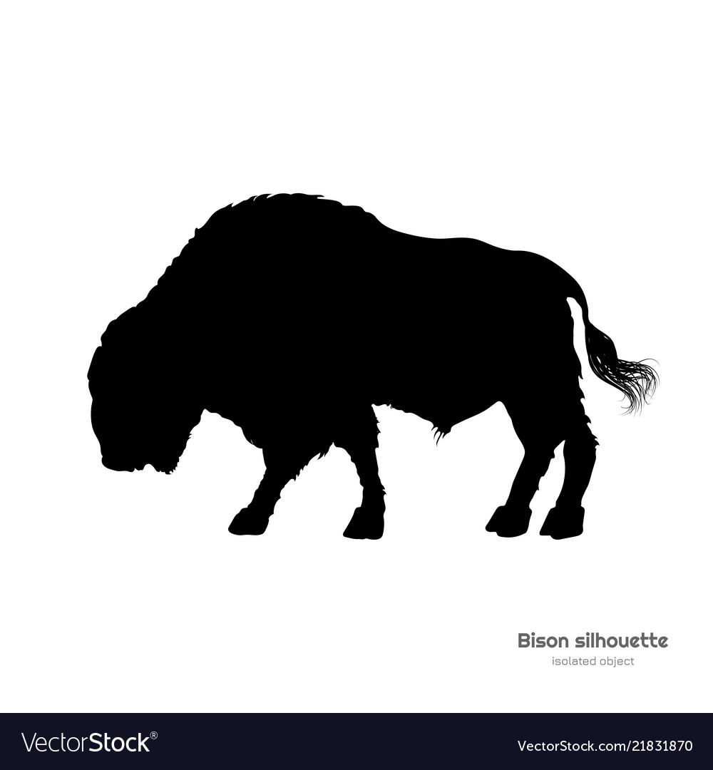 Black silhouette bison on white background