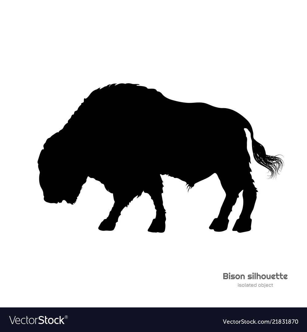 Black silhouette of bison on white background