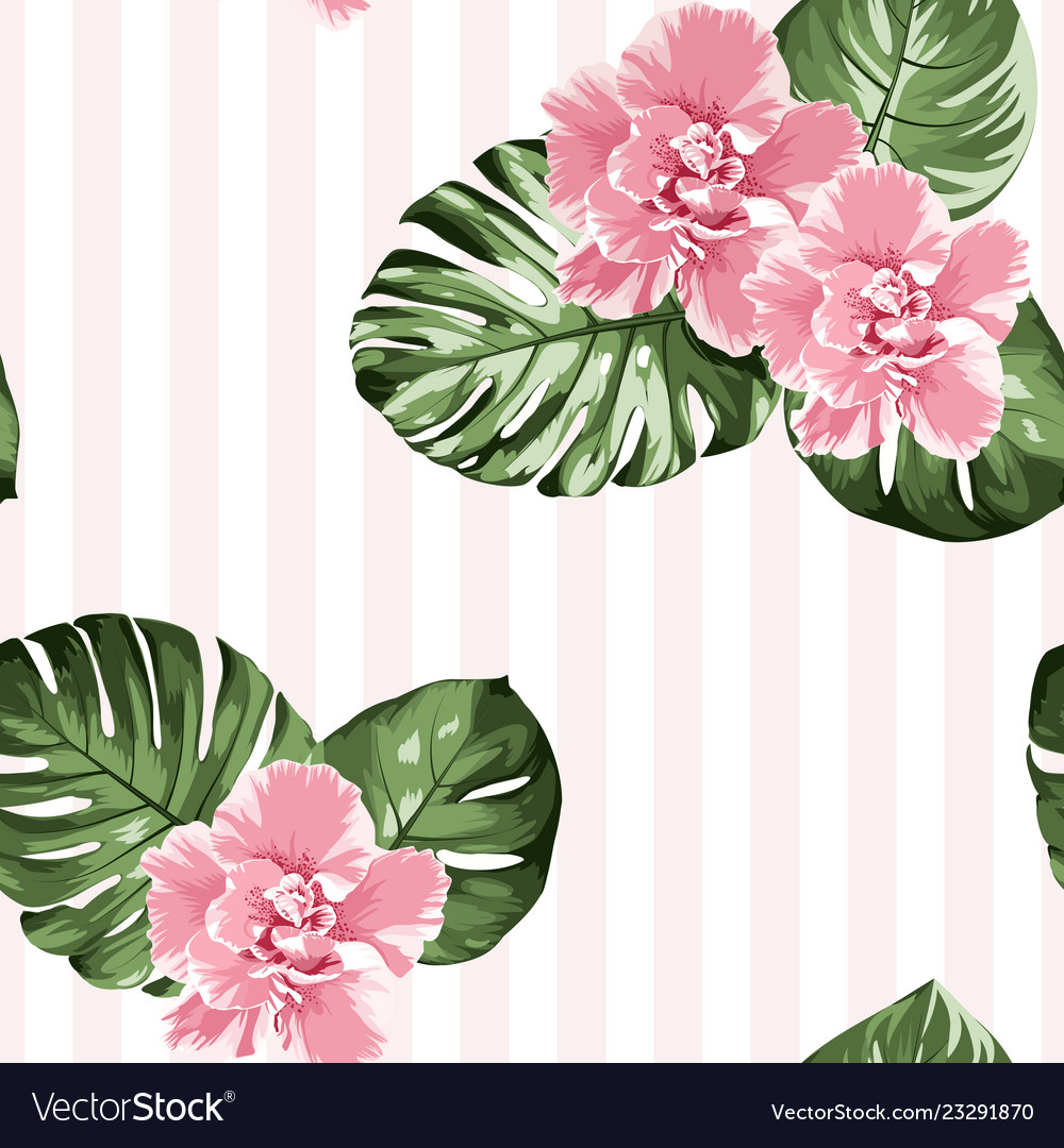 Pink camelia flowers green monstera leaves on