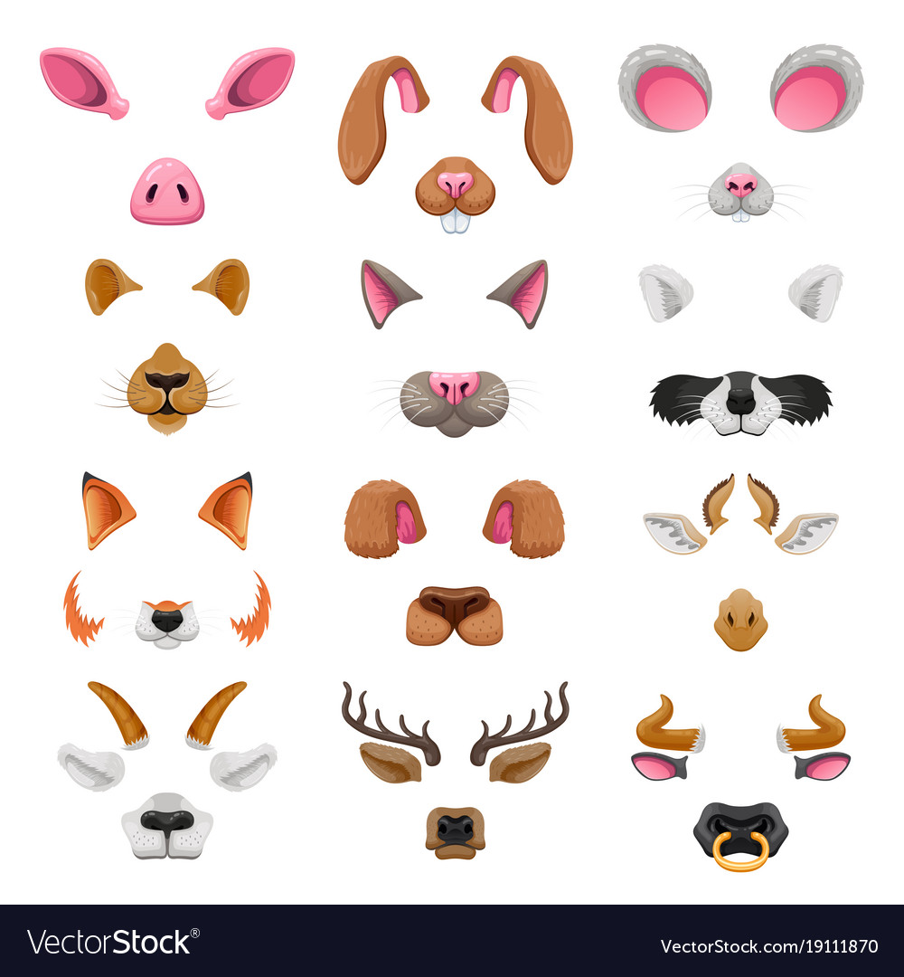 Video chat animal faces effects