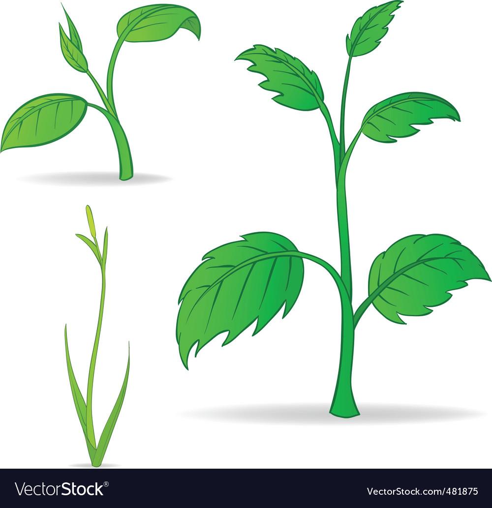 Set Of Green Cartoon Plants Royalty Free Vector Image