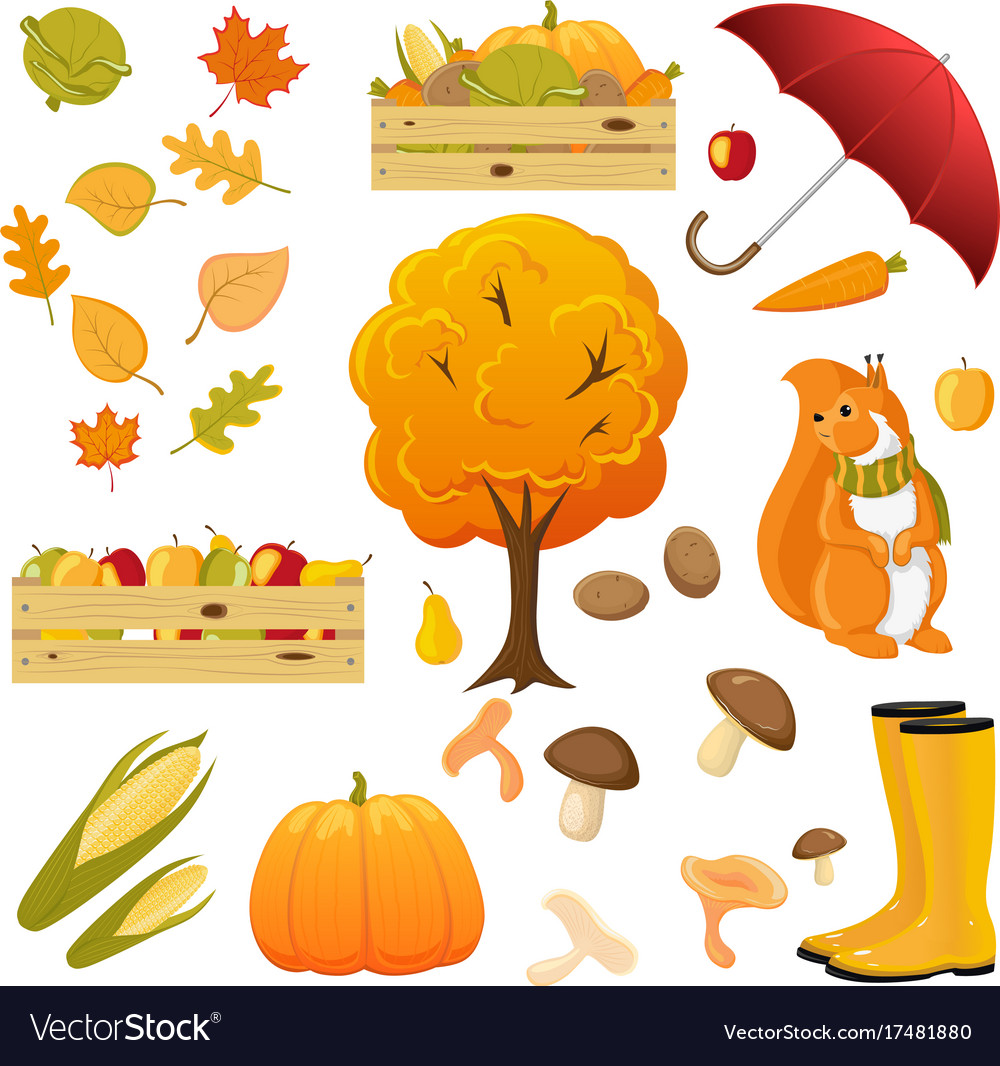 Big set of cartoon fall autumn objects elements vector image