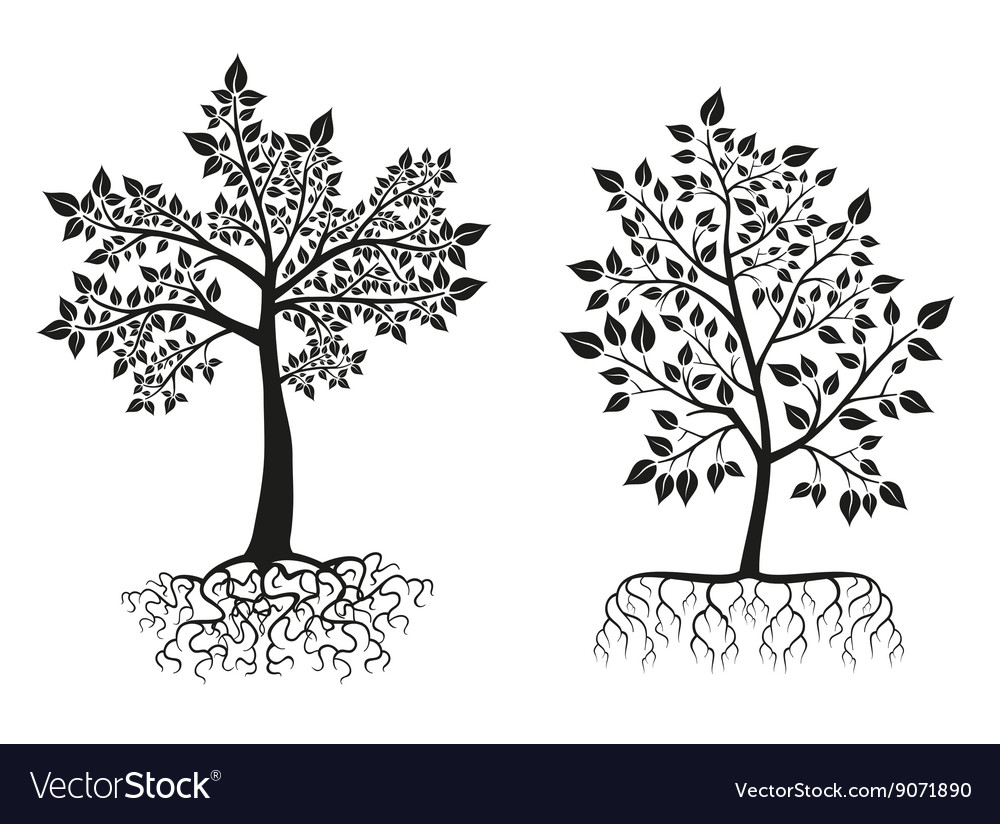 Black trees and roots silhouettes with leaves