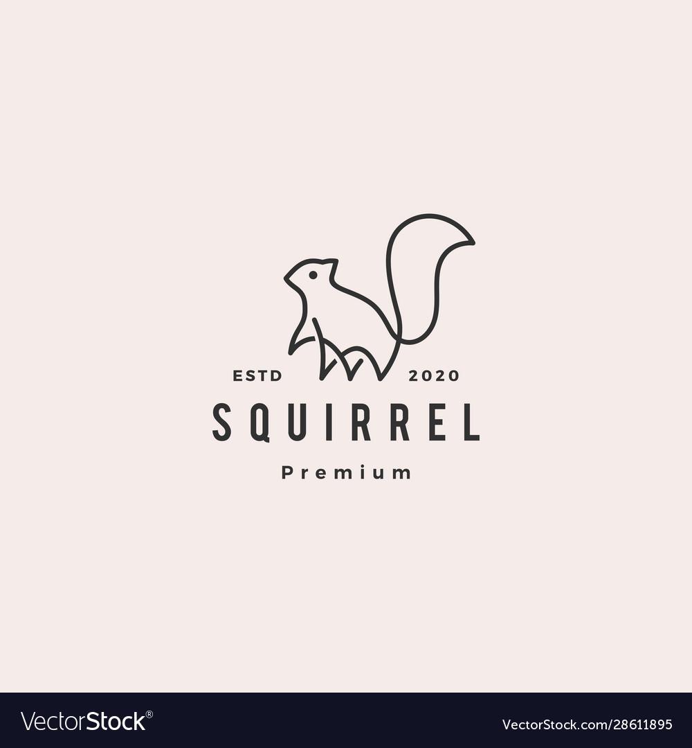 Squirrel logo hipster vintage retro icon