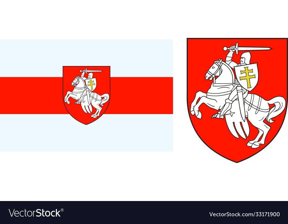 Protest belarus flag