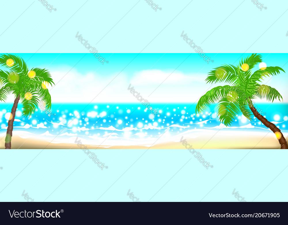 Summer time seashore palm landscape