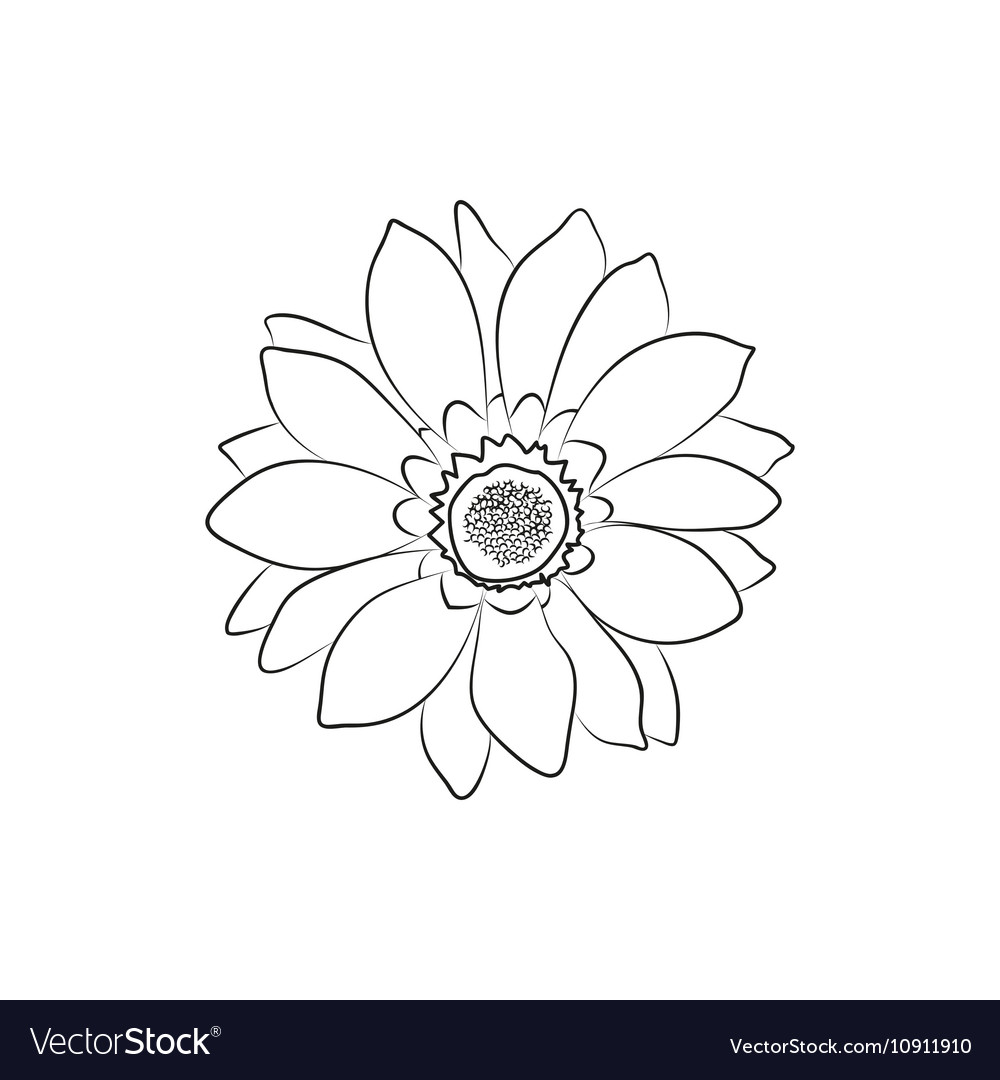 Beautiful Flower Simple Black Lined Icon On White Vector Image