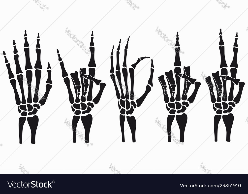 Outstanding Skeleton Hand Set Royalty Free Vector Image Vectorstock Wiring Cloud Tziciuggs Outletorg