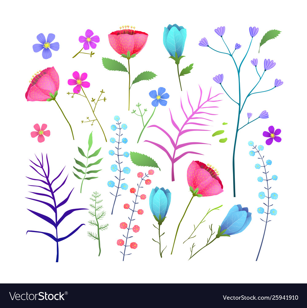 Wild flowers flat set isolated